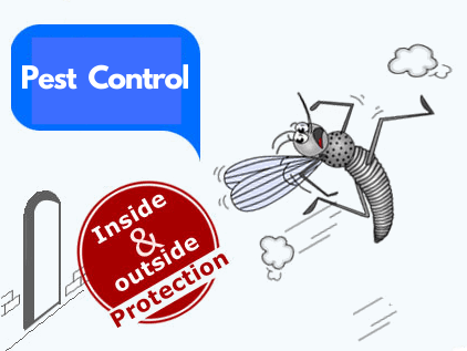 cleaning pest control