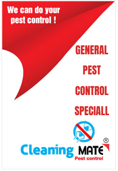 pest-control-banner